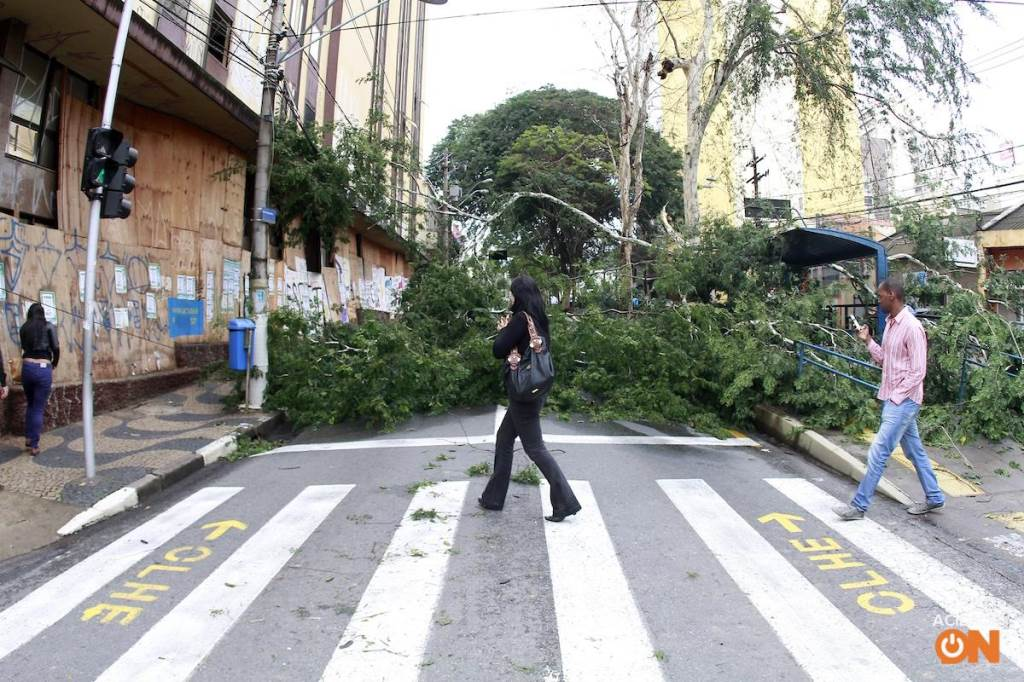 (Foto: Código19)