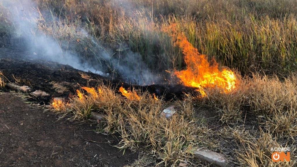 Galeria: Incêndio em vegetação na zona Norte de Ribeirão Preto