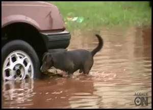 Forte chuva que atingiu a cidade nesta quinta-feira alagou ruas e deixou pessoas ilhadas