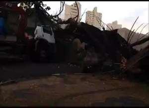 Funcionários faziam o corte da árvore no São Geraldo; veja momento do acidente