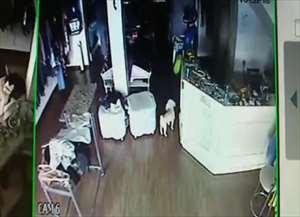 Criminosos fizeram comerciante refém e fugiram