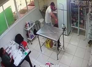 Vídeos compartilhados na internet mostram cadela ensanguentada e gato sendo erguido pela coleira