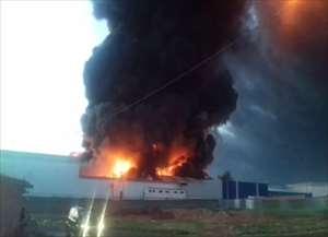 Fogo começou ainda pela madrugada e assustou motoristas e empresas vizinhas a transportadora