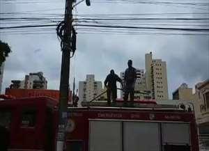 Passáro se enroscou numa linha de pipa no Centro de Ribeirão Preto e precisou da ajuda dos policiais para se libertar