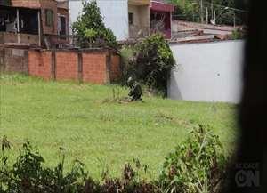 Esquadrão Antibombas veio de São Paulo para remover explosivo abandonado por criminosos que queriam explodir cofre