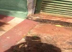 Explosivo foi achado por cão farejador da PM após denúncia anônima