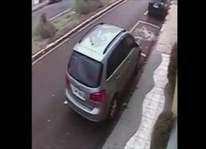Acidente aconteceu na Vila Scarabucci nesta terça-feira (20); cão não sofreu ferimentos