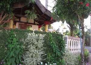 Casa é atração no bairro pela sua beleza das plantas e flores