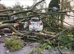 Caso aconteceu na manhã deste sábado (19) próximo ao Kartódromo de São Carlos