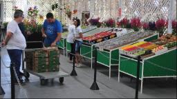 Festa do Figo e Expogoiaba começam no próximo sábado