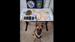 Ação do BAEP apreende drogas em mata no Jardim das Hortênsias