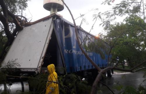 Carreta atingiu galhos de árvore - Foto: CBN Ribeirão