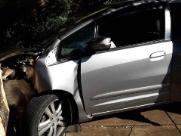 Após batida, idoso sobe com carro em calçada e atinge árvore