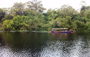Raissa Scheffer / A Cidade - Ao deixar o navio e embarcar nas lanchas ao encontro dos animais, turistas do Iberostar também se deparam com a vida local, floresta e igapós da Amazônia