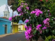 Conheça Américo Brasiliense, a 'cidade Doçura'
