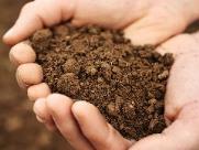 Coordenadoria de Agricultura oferece análise de solo gratuita a pequenos produtores