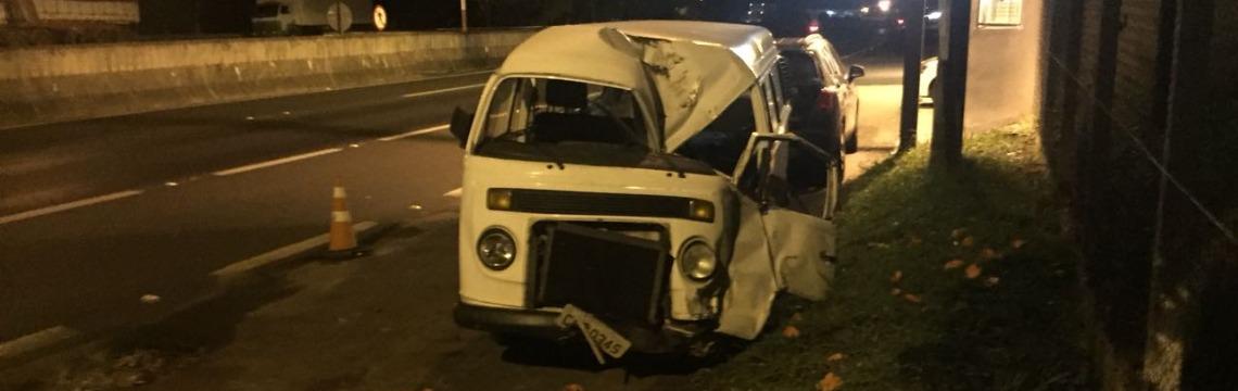 Árvore cai e atinge carro que viajava pela Rodovia SP-215 em São Carlos - Foto: ACidade ON - São Carlos