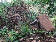 """""""Semana Lixo Zero"""" terá mutirão de limpeza no Córrego do Tanquinho"""