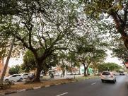 Araraquara registra temperaturas baixas nesta quarta-feira (14)