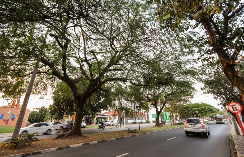 Bento de Abreu São Paulo fonte: emc.acidadeon.com