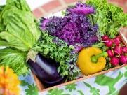 Veja dicas de alimentação para evitar gripes no inverno