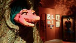 Museu da Imagem e do Som completa 50 anos em São Paulo