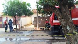 Casa pega fogo com duas crianças dentro em Araraquara