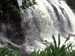 Cachoeira da Serra, em Cajuru - Foto: Divulgação Cachoeira da Serra Cajuru