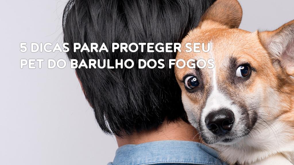 cao - Foto: DIVULGAÇÃO