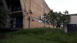 Câmara de Ribeirão Preto também sofre com mato alto