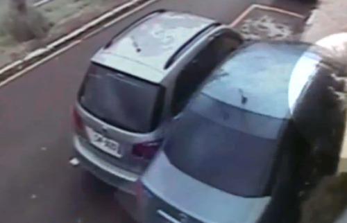 Reprodução EPTV - Cão foi arremessado para fora de veículo após acidente em Franca