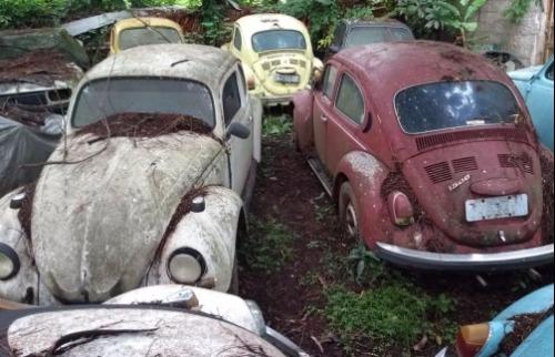 Divulgação - Carros estão em uma chácara de Valinhos