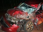 Casal fica ferido após batida com caminhão em rodovia de Miguelópolis
