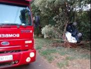 Jovem morre após perder o controle do carro e colidir em árvore