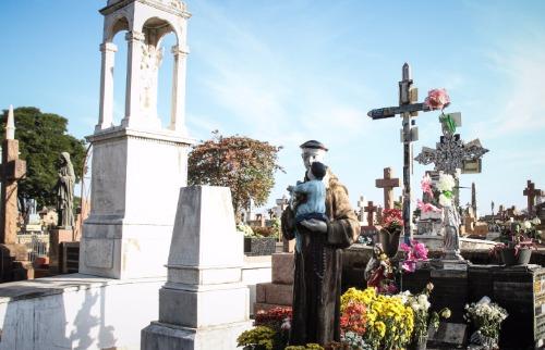 Cemitério da Saudade. Créditos: Denny Cesare/Código 19 - Foto: Denny Cesare/Código 19