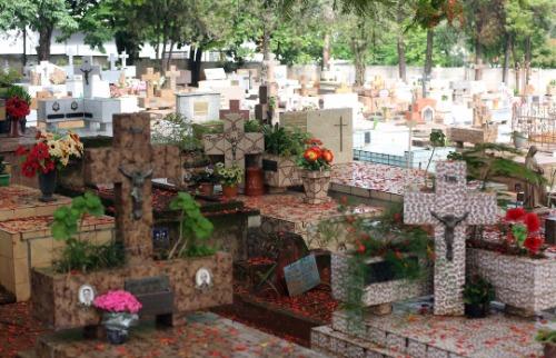 Crédito: Denny Cesare/Código19 - Cemitério de Sousas. Crédito: Denny Cesare/Código19