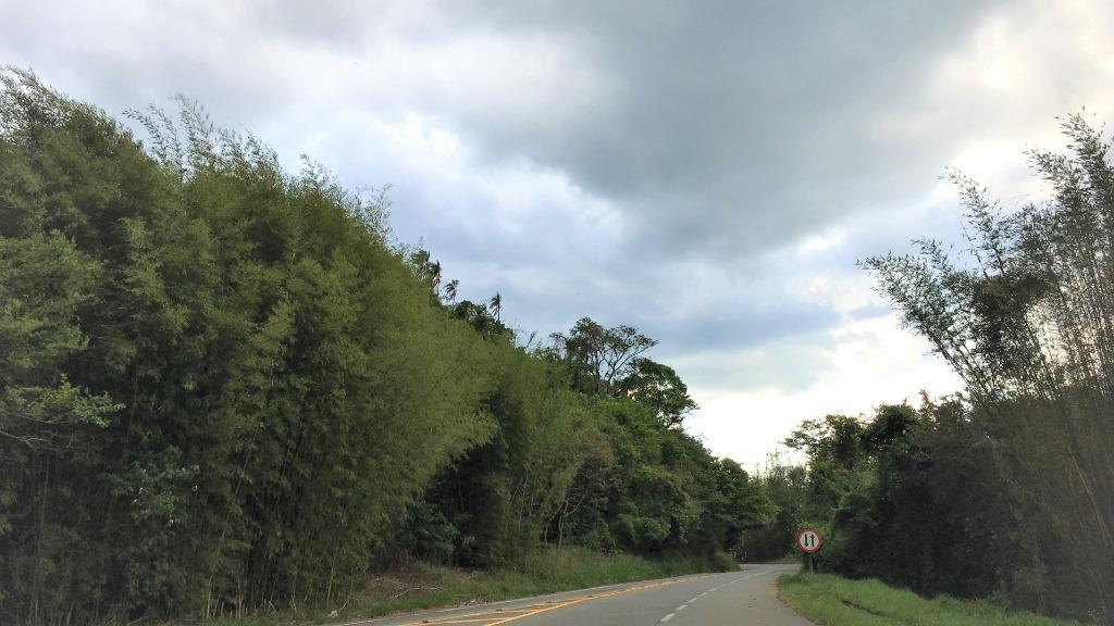 Estrada que liga Socorro a Lindoia (Foto: Andreia Pereira/ACidade ON Circuito das Águas) - Foto: ACidade ON - Circuito das Águas