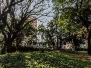 Araraquara terá céu claro e pancadas de chuva em pontos isolados