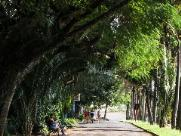 Araraquara amanhece com 14ºC, mas o sol deve aparecer