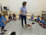 Escola de Ribeirão permite que alunos levem animais para a sala de aula