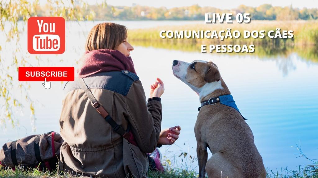 COMUNICACAO - Foto: Mundos dos Bichos