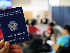 Confira as vagas de emprego do Cpat em Campinas - Foto: Fotos Públicas