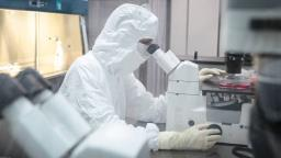 Mais de 70% dos infectados pela covid-19 estão curados