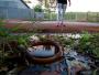 Ribeirão Preto perde anualmente 23,7 bilhões de litros de água