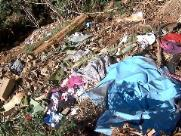 Descarte irregular de lixo contamina água de córrego em Américo Brasiliense