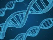 DNA Week debate importância da genética em São Carlos