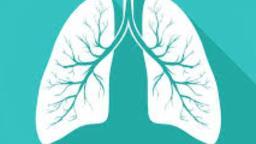 Diagnóstico é o começo do tratamento de doenças pulmonares