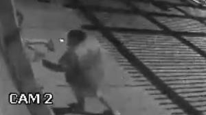 Vídeo: bandido invade empresa pela janela em Santa Bárbara