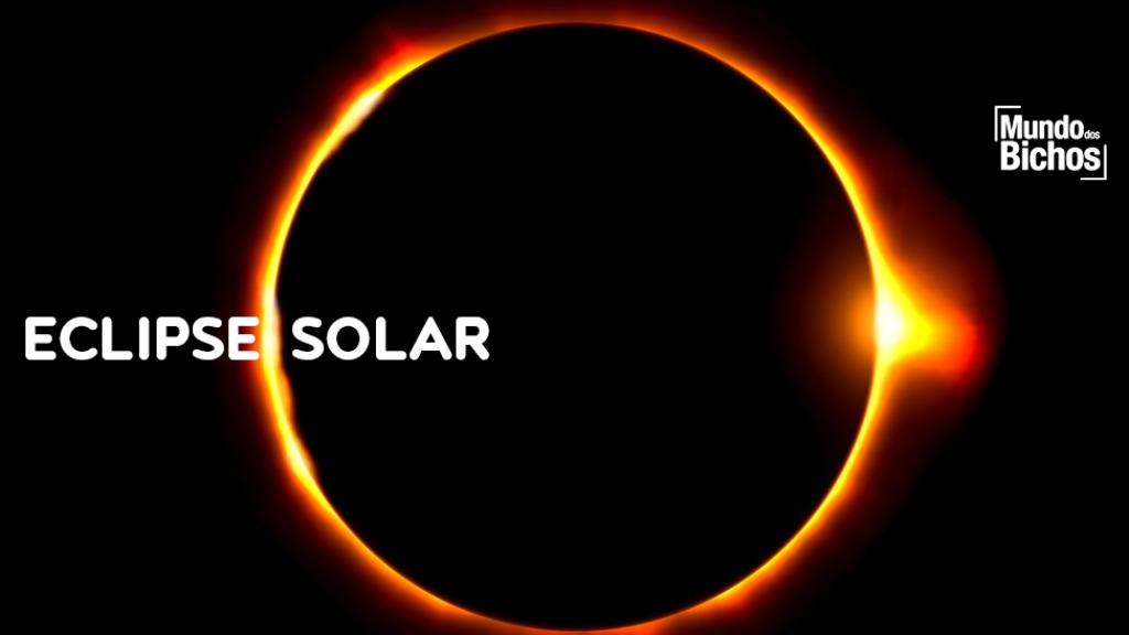 eclipse - Foto: marcelo Quén