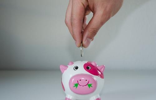 Clube de Mercado Financeiro orienta famílias a se planejar para ajustar o orçamento doméstico (foto: divulgação / PixaBay) - Foto: divulgação pixabay